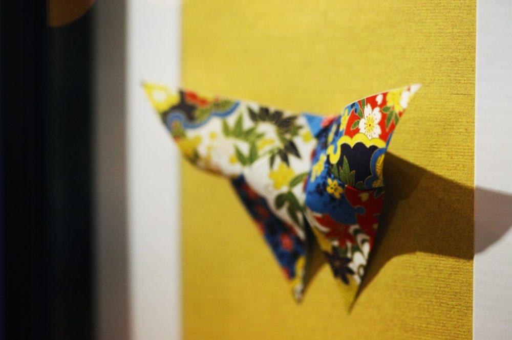 Détail papier papillon naturalisé 2