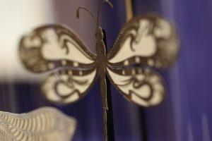 Détails libellules